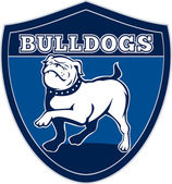 English bulldog british rugby sports team mascot — Stock Photo