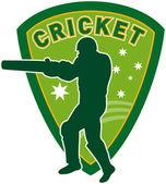 Joueur de cricket batteur australie — Photo