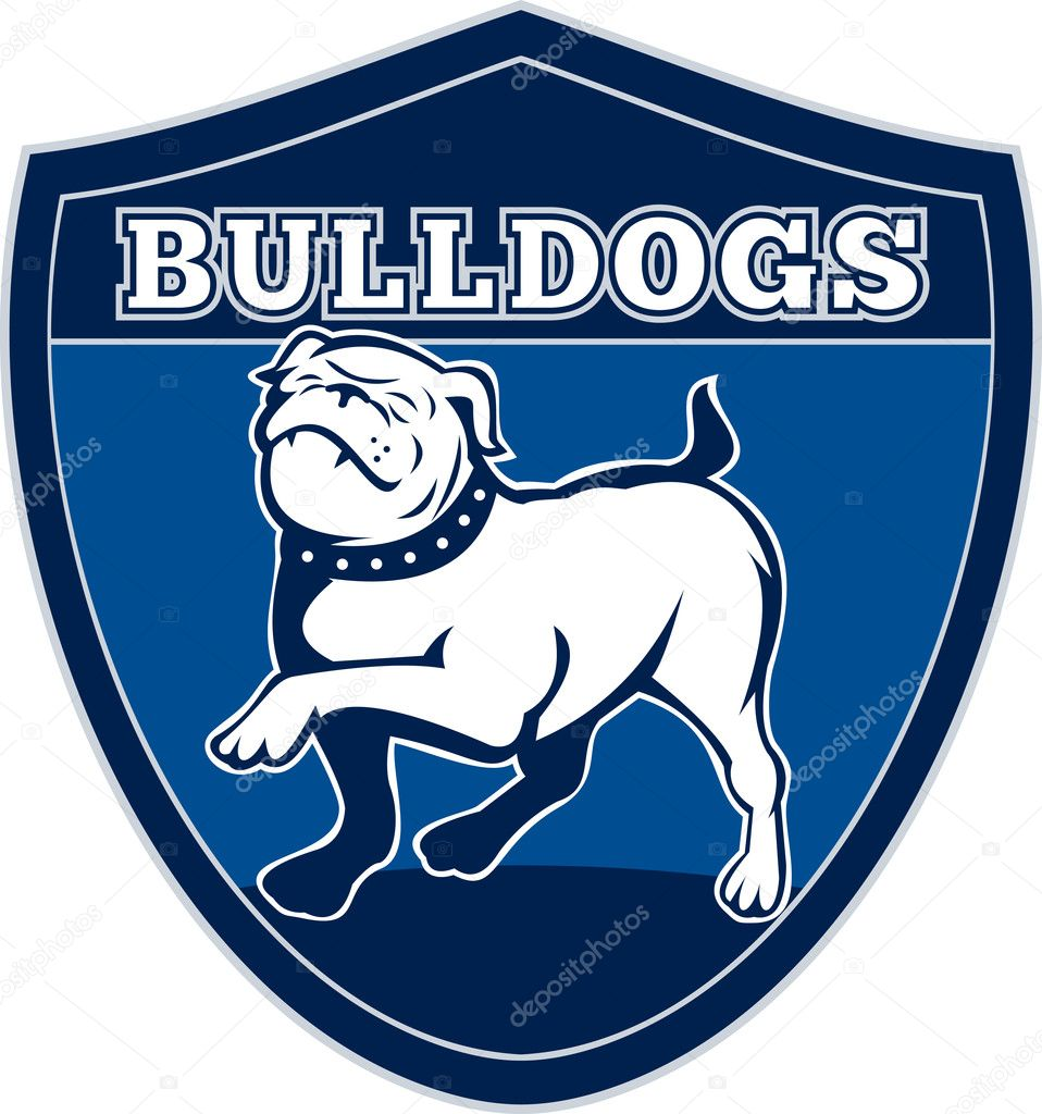Illustration of a Proud English bulldog marching with words bulldogs in background set inside a shield suitable for any sports team mascot — Stock fotografie #5560689