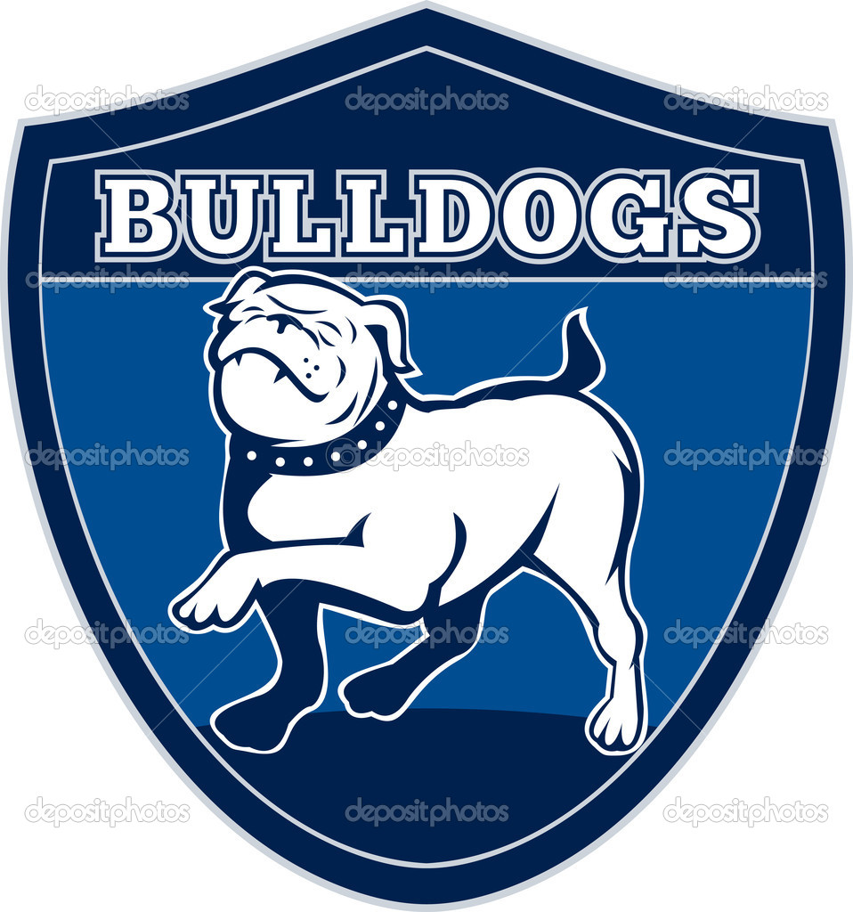 Illustration of a Proud English bulldog marching with words bulldogs in background set inside a shield suitable for any sports team mascot — Stok fotoğraf #5560689