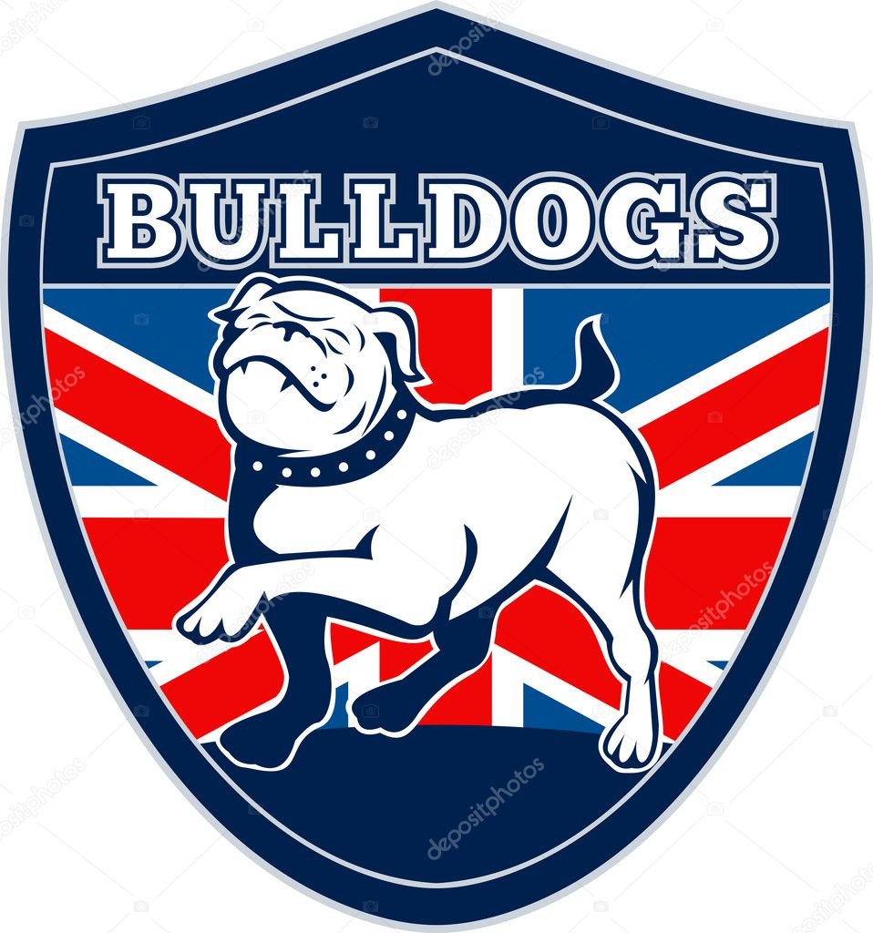Illustration of a Proud English bulldog marching with Great Britain or British flag in background set inside a shield  — Stock Photo #5560691