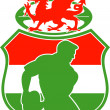 Welsh rugby player wales dragon shield — Stock Photo