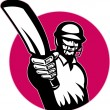 Cricket player batsman pointing bat — Stock Photo