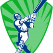 Cricket sports batsman batting — Stock Photo
