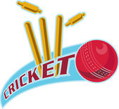Cricket sports ball wicket — Stock Photo