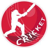 Cricket speler batsman batting bal — Stockfoto