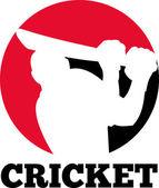 Cricket batsman silhouette batting ball — Stock Photo