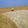 Stock Photo: Bales