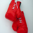 Boxing gloves — Foto Stock