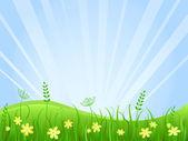 Beautiful green meadow scene — Stock Vector