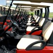 Golf Carts — Stock Photo #6176006