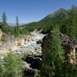 Wild landscape.Stream of mountain river.Siberia,ta — Foto de Stock