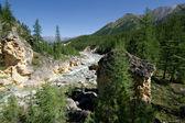 Landscape.stream selvagem de river.siberia,ta de montanha — Fotografia Stock