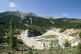 野生 nature.sayan mountains,siberia,russia.taiga. — 图库照片