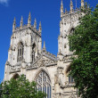 York Minster — Stock Photo #5467590