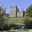 Stock Photo: Bolton Castle