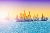 Sailing in Hungary at Lake Balaton. Blue Ribbon cup and other sa — Zdjęcie stockowe