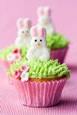 Easter cupcakes — Stock Photo