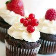 Red berry cupcakes — Stock Photo #5603612