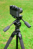 The camera and tripod — Stock Photo