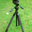 The camera and tripod — Stock Photo