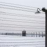 Auschwitz camp, Poland — Stock Photo #5798157