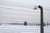 Auschwitz camp, Poland — Stock Photo