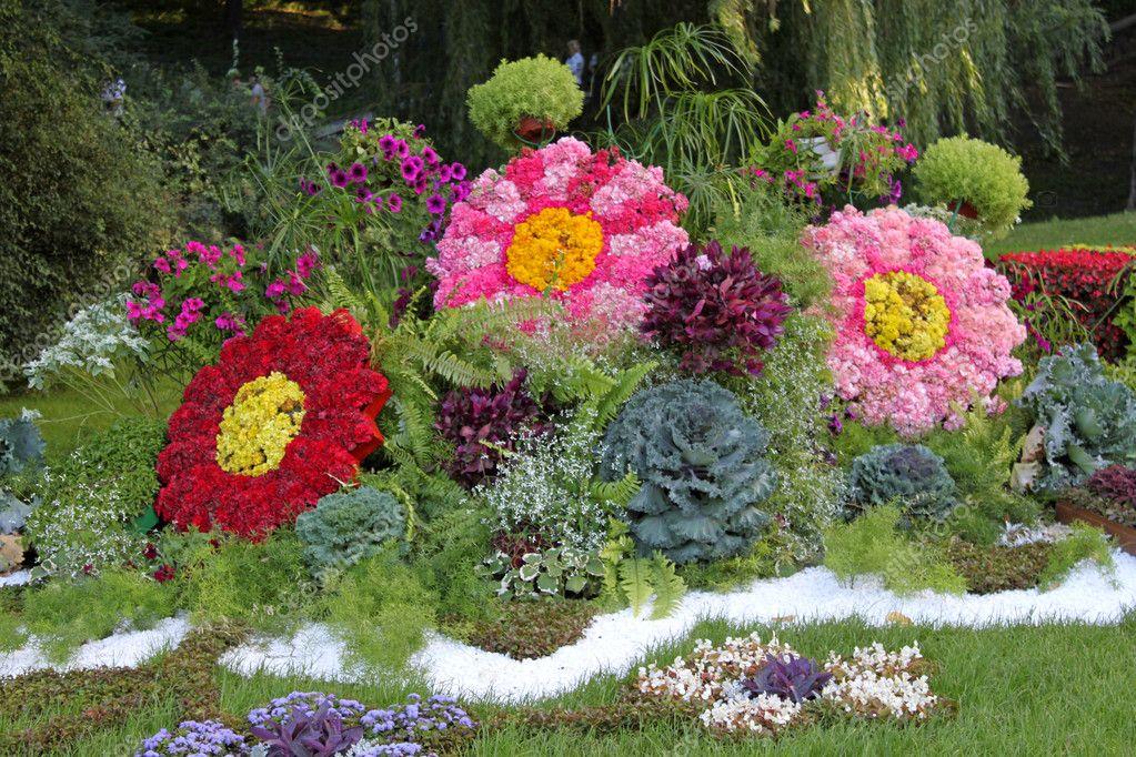 Сорта цветов цветущих все лето