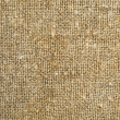 Burlap — Stock Photo #6043341