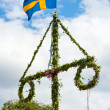 Midsummer — Stock Photo #6015940