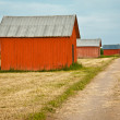 Old weathered barns - 