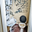 Dirty toilet - 