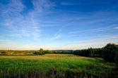 Svenska countyside — Stockfoto