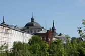 Wall and domes of the Holy Trinity Sergius Lavra — Stock Photo
