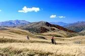 Mountainbiking — Stock Photo