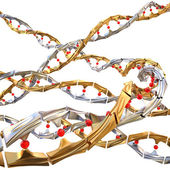 Dna chain — Stock Photo