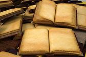 Book — Zdjęcie stockowe