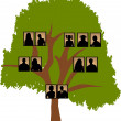 Royalty-Free Stock Vector Image: Family tree