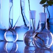 Ecologic laboratory, new source of energy! — Stock Photo