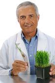 Wissenschaftler mit reagenzglas-pflanze — Stockfoto