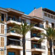 Porto Cristo Hotel and the palms, Majorca, Spain — Stock Photo