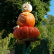 Pumpkin owl figurine — Stock Photo #6387491