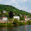 Bank of the Neckar river and Heidelberg embankment — Foto Stock