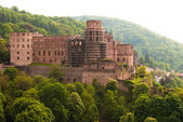 Heidelberg castle and forests on the hill — Stock Photo