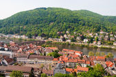 Panoramic view of Heidelberg old town — Stock Photo