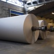 ������, ������: Paper and pulp mill plant Rolls of cardboard