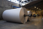 Paper and pulp mill plant - Rolls of cardboard — Stock Photo