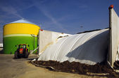Renewable Energy: biogas energetic valorization — Stock Photo