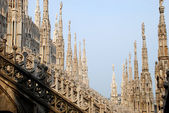 Milan Cathedral, detail — Stock Photo