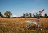 Broken shopping cart in the nature — Stock Photo
